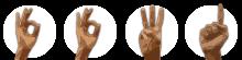 kostenlos counter